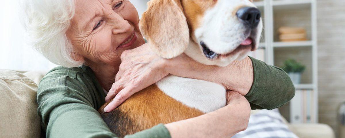 Besuchsdienst mit Hund