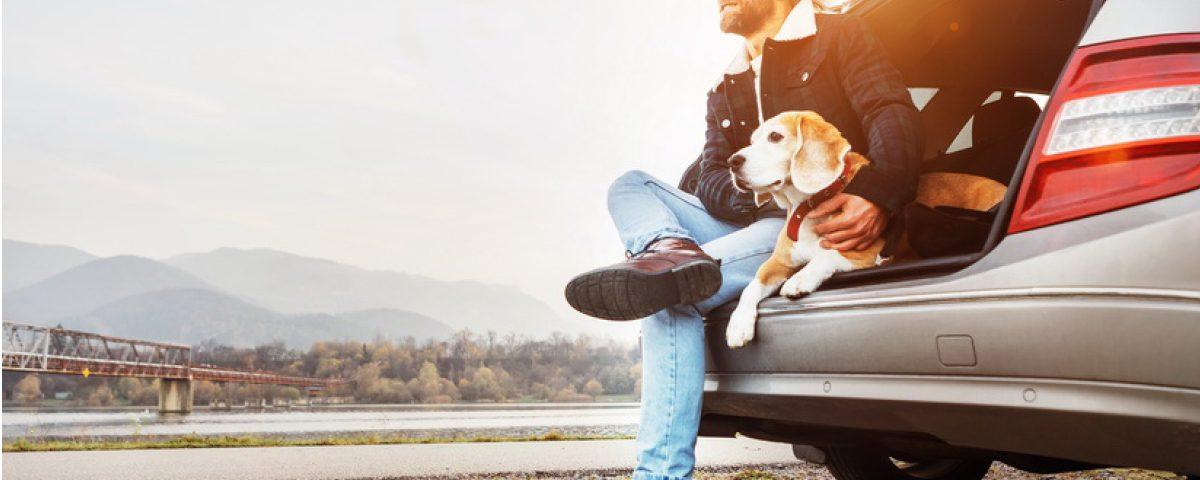 hundemagazin.info-beitrag-verreisen-mit-dem-hund
