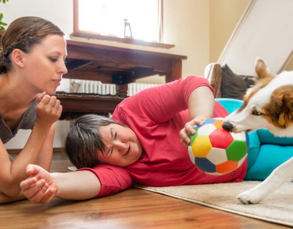 hundemagazin.info-beitrag-welcher-hund-eignet-sich-als-therapiehund