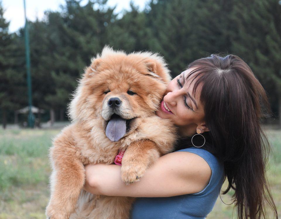 Hunde mit einer blauen Zunge