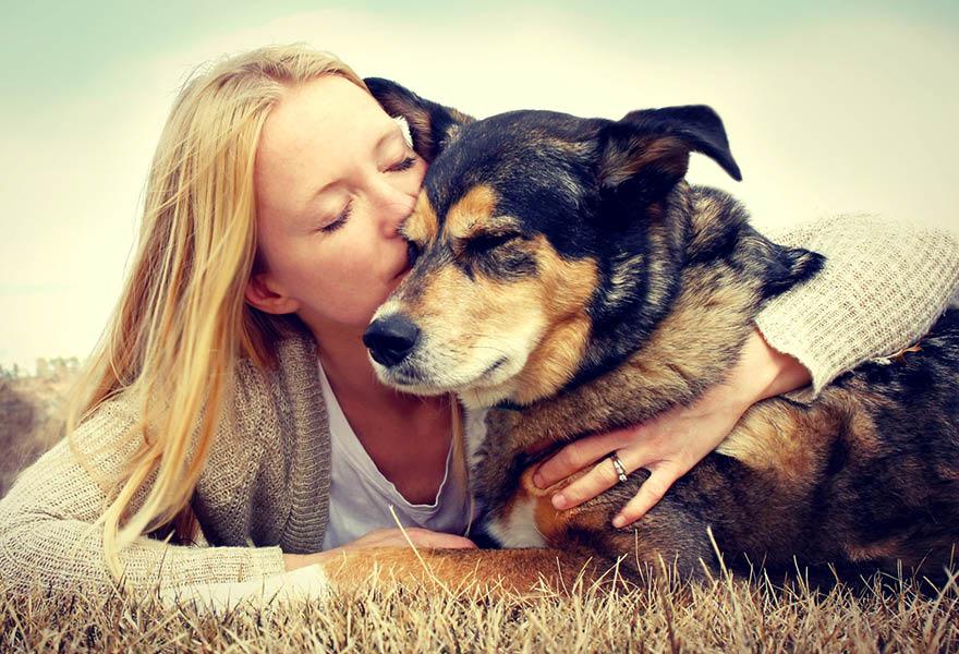 Hundemagazin - Wissenswertes rund um den Hund